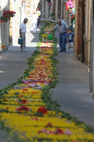 Image showing a narrow street in tuscan village with the residents outside attending to the path they have made of rose petals ivy and broom blossom for the morning of the holy communion