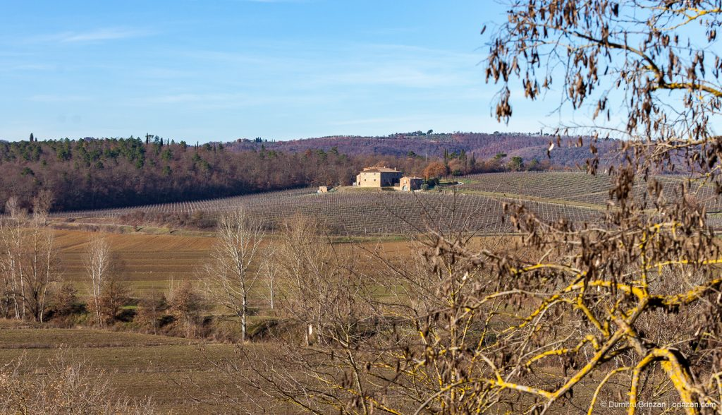 Image showing countryside in siena trequanda and sinalunga hills viewed from boutique hotel garden trees are bare sky is blue colours are siena red umber and ochre and cypress green tuscany in winter landscape