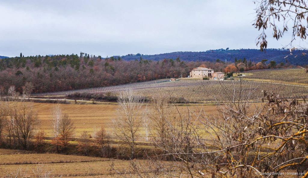 Image showing tuscany winter landscape mainly in yellow ochre and burnt sienna bottle green and siena red colouring in the forested rolling hills and cobalt and cypress green in the distant ridge